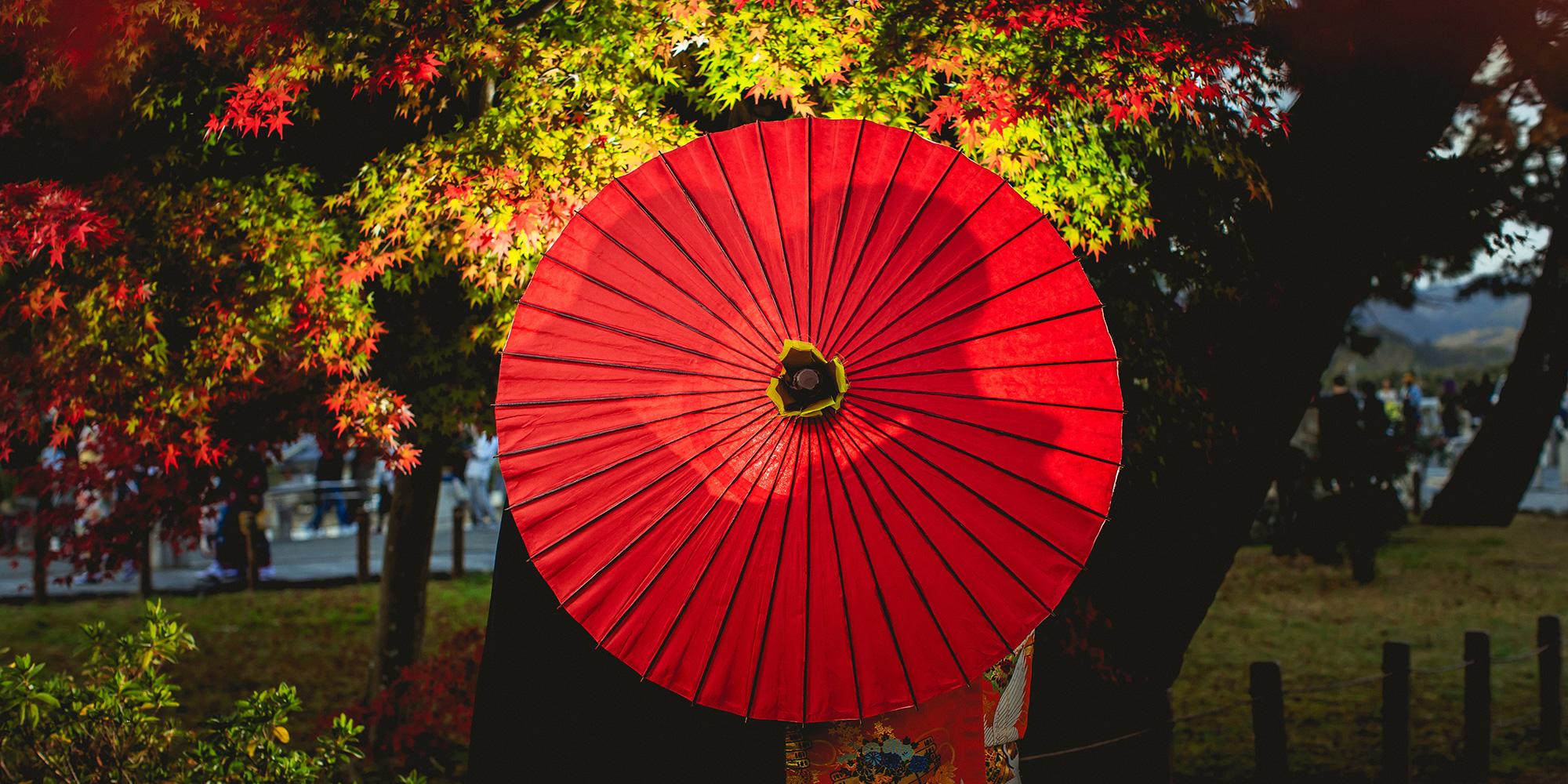 MRW 神戸京都イメージ